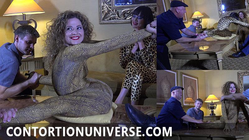contortionuniverse.com